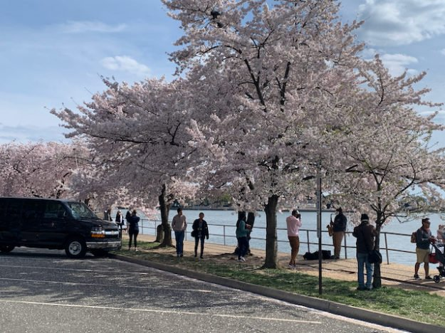 Tidal Basin on 22 March 2020, before enhanced restrictions