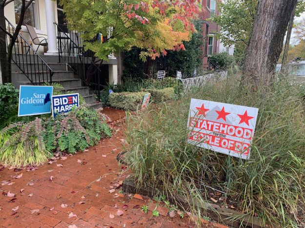political signs in front yards of DC