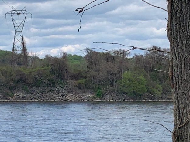 Rowland Island at Conowingo Dam