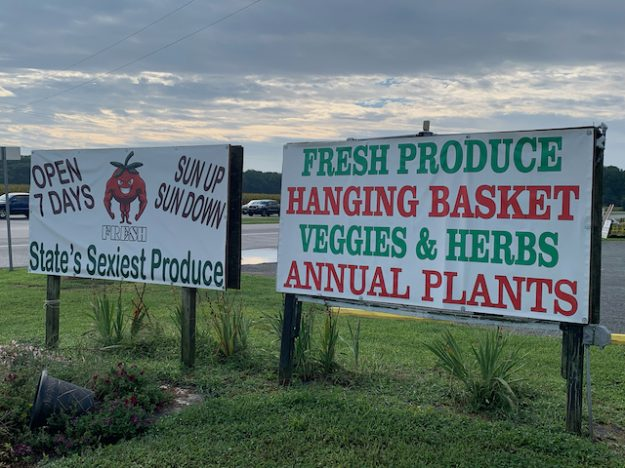 sexy produce market in southern Delaware