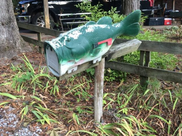 quirky mailbox at weekend home in Lake Barkley