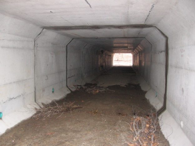 wildlife underpasses in Concord, MA