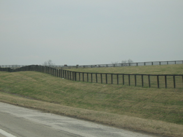 black fences of central KY