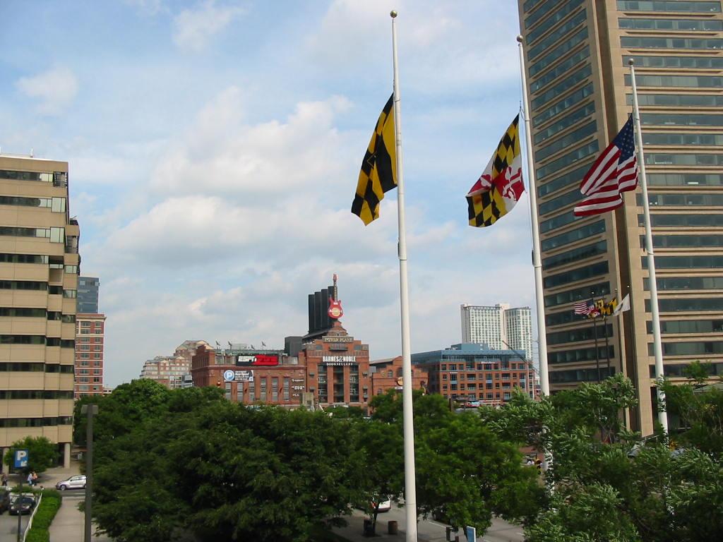 vexillology Maryland flag
